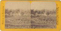 Parigi Giardino Lussemburgo Stereo Stereoview Vintage Albumina Ca 1860