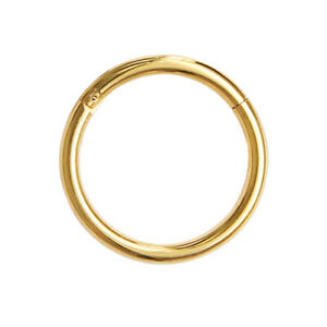 Hinged Seamless Segment Ring Surgical Steel Nose Hoop Earring Labret Septum Ring