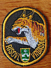 REPUBLIC OF SRPSKA ARMY - Fighter  Bomber Squadron VRBAS LYNXES - war time patch