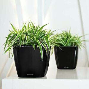 Lechuza Quadro 20x21x21cm Desk Shelf Table Plant Pot Bowl white black grey