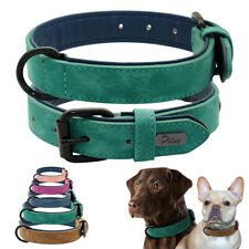 Adjustable Dog Collar Soft Padded for Small Large Breeds French Bulldog Labrador