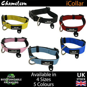 Chameleon's Neoprene padded pet / dog collar 22cm - 71cm 6 colours Top Quality