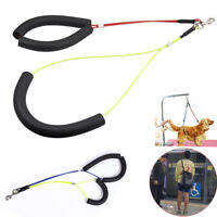 Pet Dog Harness No-Sit Per Haunch Holder Grooming Restraint Harness Leash Loop