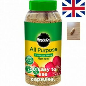50 x Miracle Gro All Purpose Easy Use Plant Food Tablets. **AMAZING VALUE**