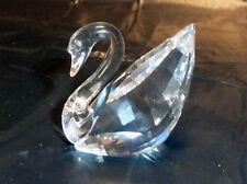 SWAROVSKI Crystal SCS CIGNO MEDIO Medium Swan