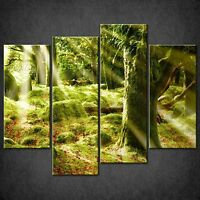 SUNRAYS IN MYSTICAL FOREST CASCADE CANVAS WALL ART PRINT PICTURE READY TO HANG