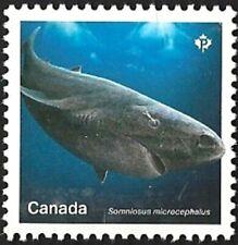 Canada # 3108     Shark - Les Requin      Brand New 2018 Pristine Issue