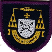 Boy Scout Badge Ext DOWN & CONNOR CBSI Assn IRELAND