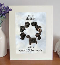 Giant Schnauzer 8 x 10 Free Standing LIFE IS BETTER Picture 10x8 Dog Print Gift