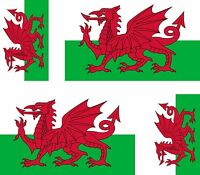 License Plate Covers Wales Flag RED Dragon Welsh Country Chrome Study Metal License Plate Frame