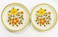 Wild Flower Dinner Plates Stoneware Made in Japan Retro Set of 2 Vintage EUC