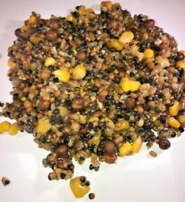 Prepared Particle Mixture With Maize - Spod Mix