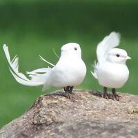 1x Mini Juguetes Decorativos Pluma de Espuma Artificial Pájaros Artesana*QA