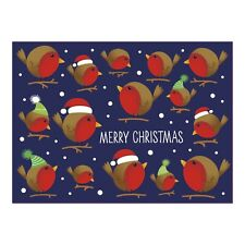 Christmas Cards Bright Robin Duo - Pack of 16 cards in 2 designs
