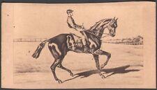 Hippisme. Cheval de course - Vertugadin. Photographe Neurdein. Vers 1870. CDV