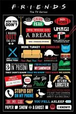 """Friends Infographic Maxi Poster 24"""" x 36"""" - Central Perk"""