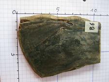 Original Büffelhorn dunkel, marmoriert, ideal als Griffschalen, 9x6x0,6 Nr. B6