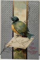 New Year Forget Me Not, Blue Bird on Branch Embossed Silvered 1911 Postcard D19