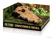 Exo Terra Crocodile Skull Hide for Geckos Corn Snakes Bearded Dragons, Vivarium!