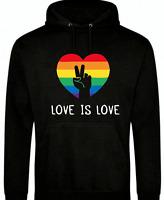 LOVE IS LOVE LGBT RAINBOW UNISEX SWEATSHIRT HOODIE PRIDE GIFT FESTIVAL HOODY