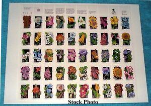US 1992 Wildflowers sheet, Scott 2647 - 2696 (2696a) MNH, Unmounted, Cat. $40
