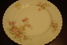 O & E G Royal Austria [later EPIAG] (Bohemia) - c1890s set of 11 dinner plates