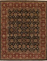 8x10 Black/Burgundy Agra Oriental Area Rug Floral New-Zealand Wool Hand-Knotted