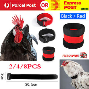 2/4/8PCS Anti Crow Collar for Roosters Cockerel No Crow Noise Neck Belt Nylon