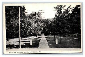 Vintage 1921 Photo Postcard Bucknell College Park Lewisburg Pennsylvania