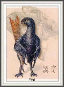 DINOSAUR Scansoriopterygidae CHINA Hebei 辽宁 Liaoning 河北 Prehistoric BIRD card #3