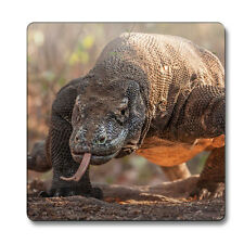 Komodo Dragon Animal Magnet