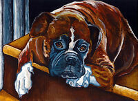 BOXER Brindle Fawn White Dog Signed 8x10 Art PRINT of Original Painting by VERN