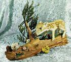BR14 Taxidermy Baby Javelina Pig & Bees on wood oddities Curiosities Specimen
