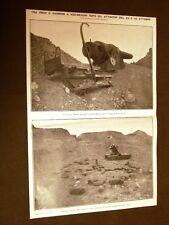 Spedizione Italia Tripolitania Libia 1911 Sidi Messri Solaroli Grazioli Granafei