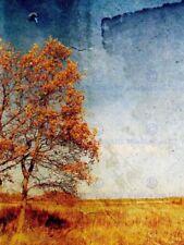 Decorator Landscape Art Posters