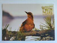 Twin Peaks Gold Box Postcard #2 of 61 - Bird - 2007