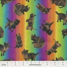 Wizard of Oz TOTO TOSS RAINBOW Stripe Dog Basket OOP Fabric By the FQ - 1/4 YD