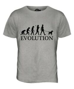 Border Terrier Evolution Of Man Herren T-Shirt Oberteil Hundenliebhaber Geschenk