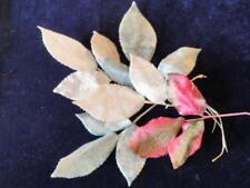 """Vintage Millinery Flower Collection 3"""" Pink Blue White Velvet Leaf German  H1783"""
