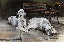 "ENGLISH SETTER GUN DOG FINE ART LIMITED EDITION PRINT - ""After the Walk"""