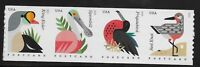 US Scott #4995-98, Coil of 4 2015 Coastal Birds VF MNH