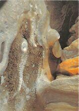 B44844 Sudety Wschodnie Grupa Snieznika   poland
