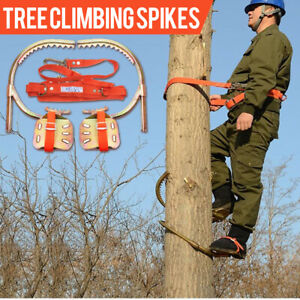 Tree Climbing Gear Spike Set Climbing Trees Buckle Wood Pole Buckle w/ Safe Belt