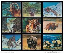 BHUTAN 3-D Plastic Fancy Stamps-9 Different Panda, Elephant, Tiger Etc.