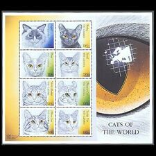 Gambia, Sc #2287, MNH, 2000, S/S, Cats