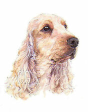 COCKER SPANIEL no7.         3 Blank Dog greeting cards by Christine Groves