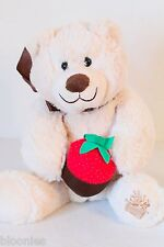 Beary Loved Bear w/ Faux Chocolate Dipped Strawberry Edible Arrangements Plush