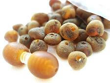 REAL RAW BALTIC HOLED AMBER LOOSE ROUNDED BEADS 50 +1 SCREW CLASPS
