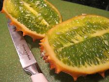 kiwano melon-Horn melon-jelly melon-10 Finest Seeds - Liveseeds