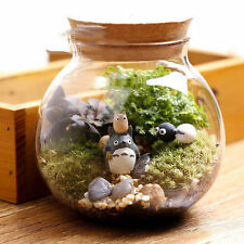 Cartoon Glass Ball Doll House Miniature Handcraft Creative Gift w DIY Tool Craft